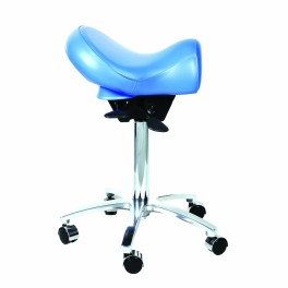 GMS 10 Dental Stool
